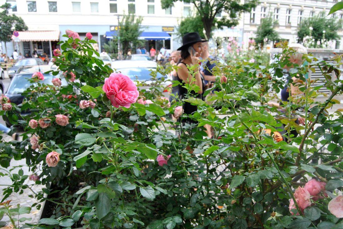 pink mauerpark berlin flea market1