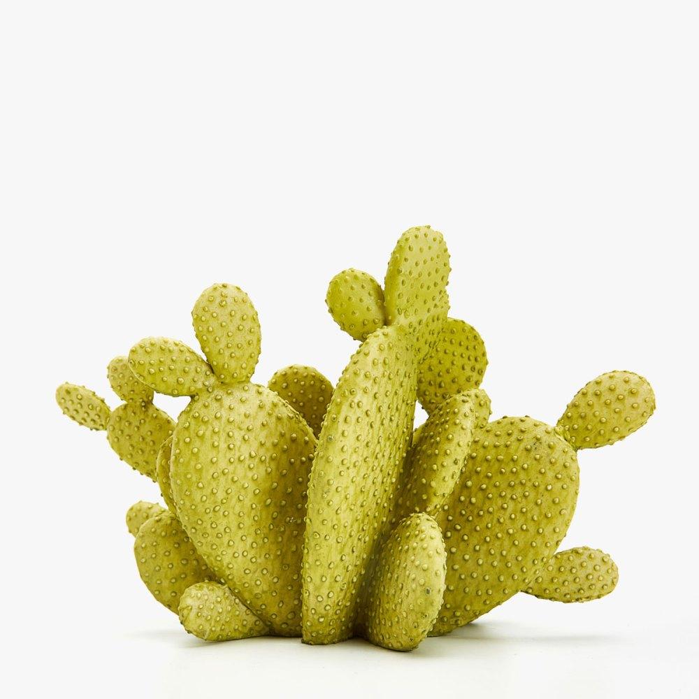 idees-cadeaux-anniversaire-femme-maison-deco-cactus
