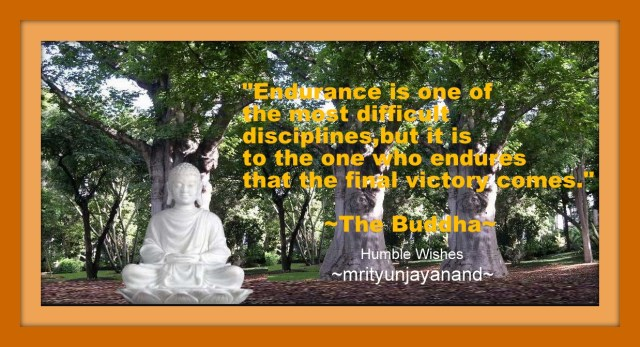Endurance is one of the most difficult disciplines..!!!