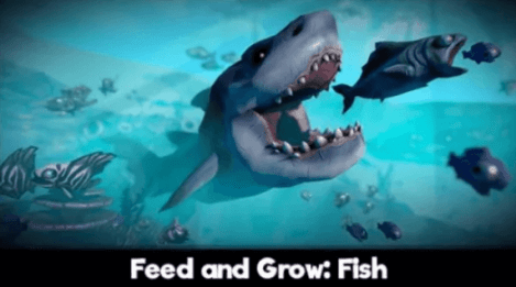 Feed And Grow Fish Download