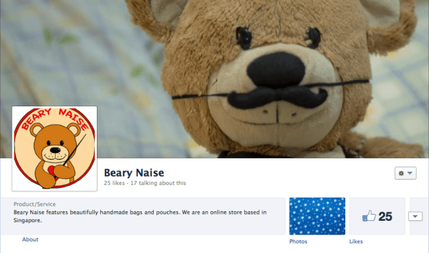 Beary Naise Facebook Page