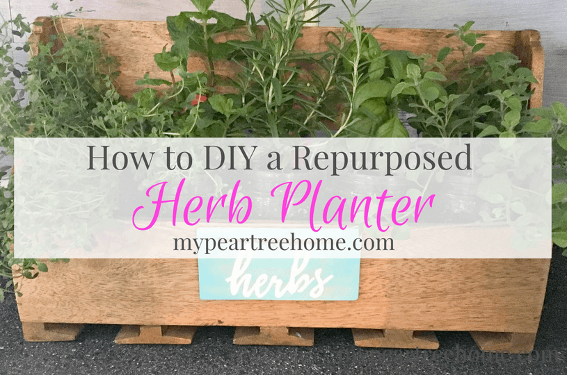 """Re-purpose your own herb planter with this DIY idea. See the post for the printable to make your own """"herb"""" sign!"""