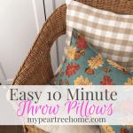 10 Minute Throw Pillows