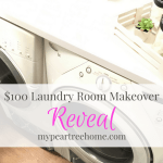$100 Laundry Room REVEAL!