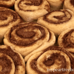 Do you love cinnamon rolls? This recipe is a winner. Absolutely delicious- these basically melt in your mouth! Click to the post to get the only cinnamon roll recipe you will ever need!