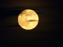 Supermoon_MyPerdidoKey_com_08-10-14-19