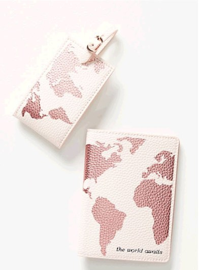 Passport Holder and Luggage Tag Set