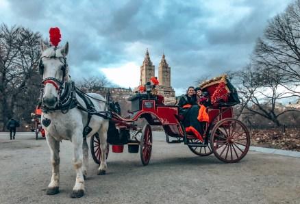 Carriage Ride Through Central Park