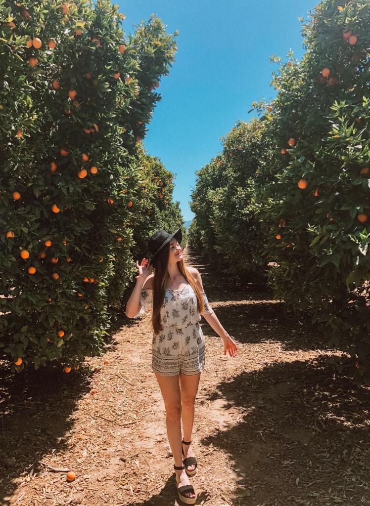 Orange Farm in Temecula California
