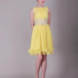 yellow dama dress