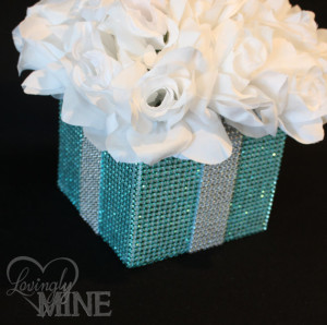 Party Fiesta Houston Blue Quinceanera Decorations