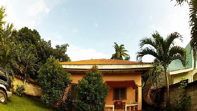Hot metal roof....