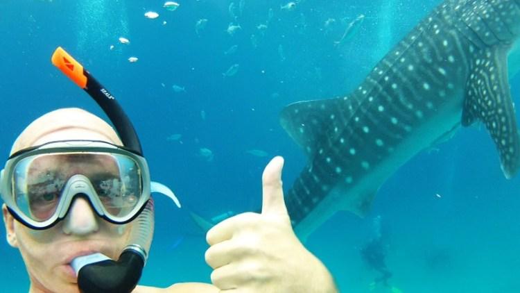Whale Shark me Thumbs up
