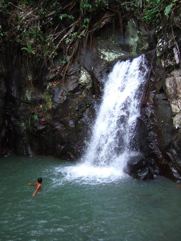 Falls in mountains above Mambukal Resort
