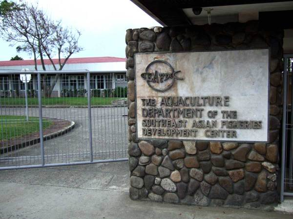 Southeast Asia Fisheries Development Center, Tigbauan
