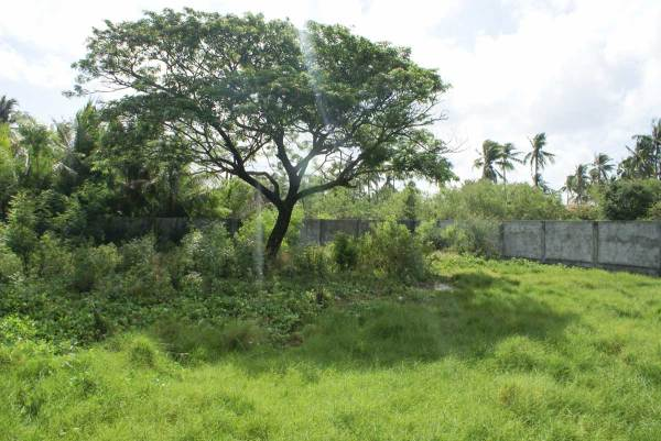Lot for sale, Villa Santo Domingo Subdivision, Tigbauan Iloilo