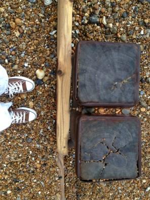 the shingle beach