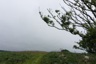 Clovelly to Hartland Quay on the South West Coast path on mycustardpie