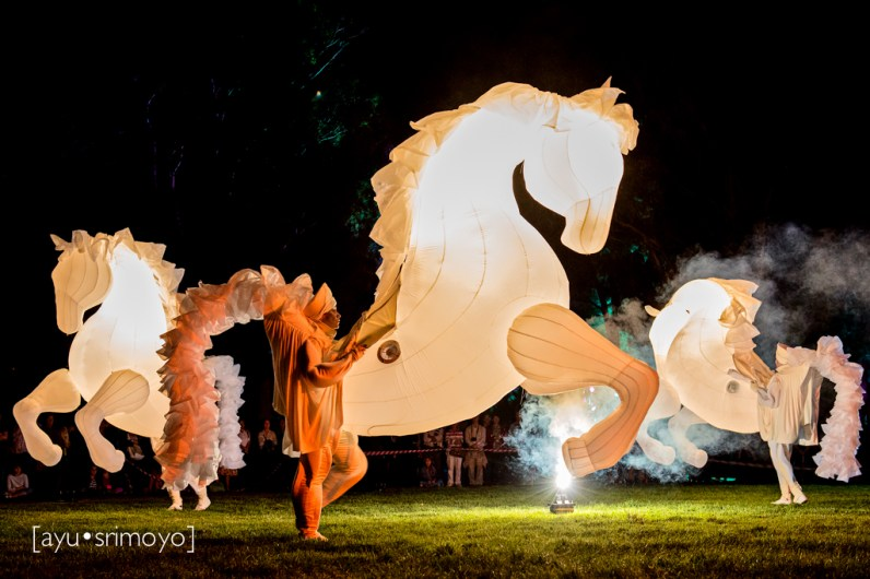 Fiers a Cheval 5, Enlighten Canberra 2014