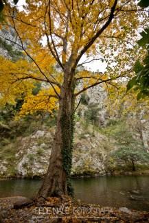 FN_2013_Cantabria_0123