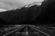 mpyh_2017_new-zealand_milford-road_0035