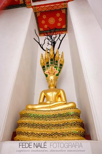 mpyh_2017_thailandia_bangkok_0073