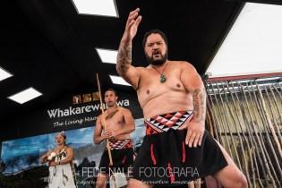 MPYH_2017_New Zealand_Whakarewarewa_0022