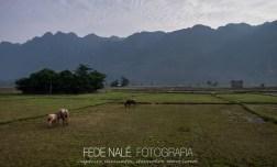 MPYH_2017_Laos_Thakke_3 day loop_0022