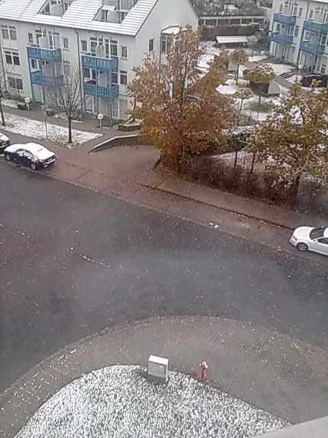 Schnee auf Dächern und Wiesen