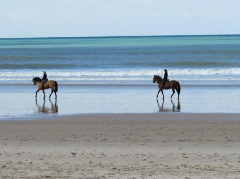 Reiten am Strand Andalusien