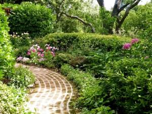 PS+Pink+Flower+Garden1