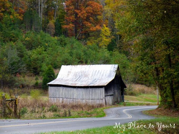 TN Autumn05