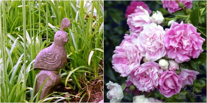 Garden heirlooms