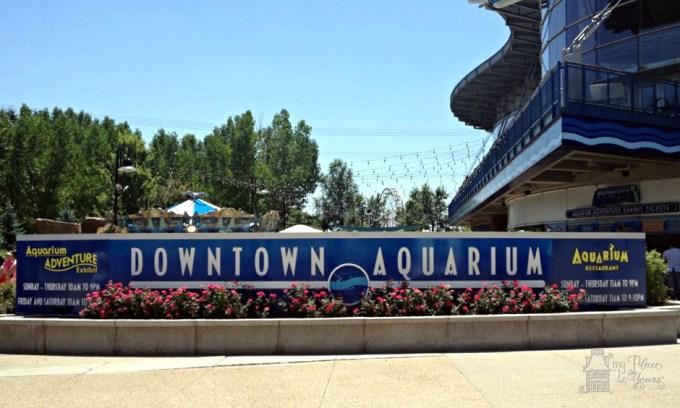 Denver Aquarium - 1