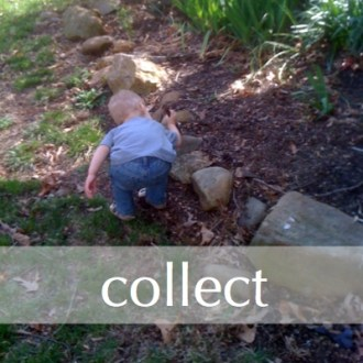 COLLECT:  Five Minute Friday