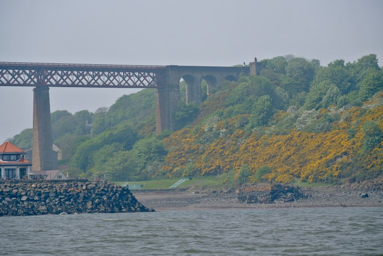 Gorse covered bands and a bridge on the banks of the Firth of Forth.