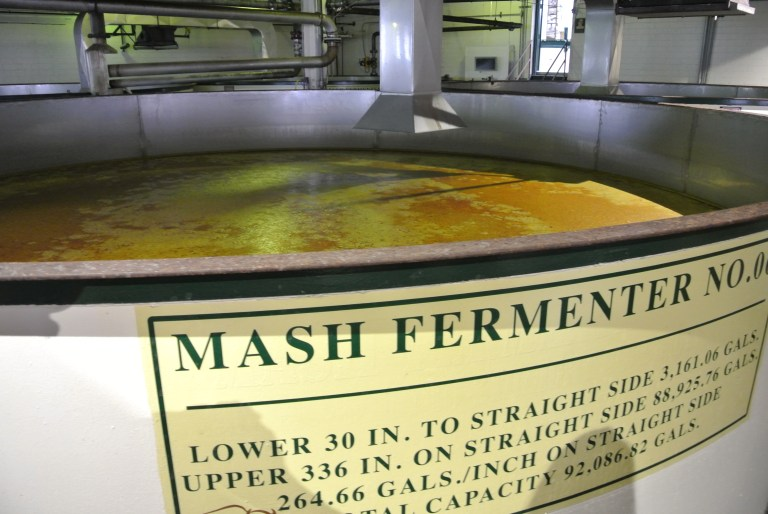 Whiskey mash in a fermenter tank.