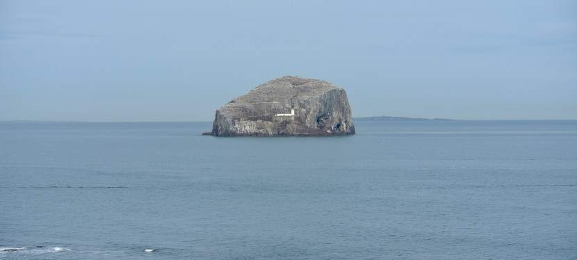 Bass Rock-A Tiny Scottish Island With a Giant Personality