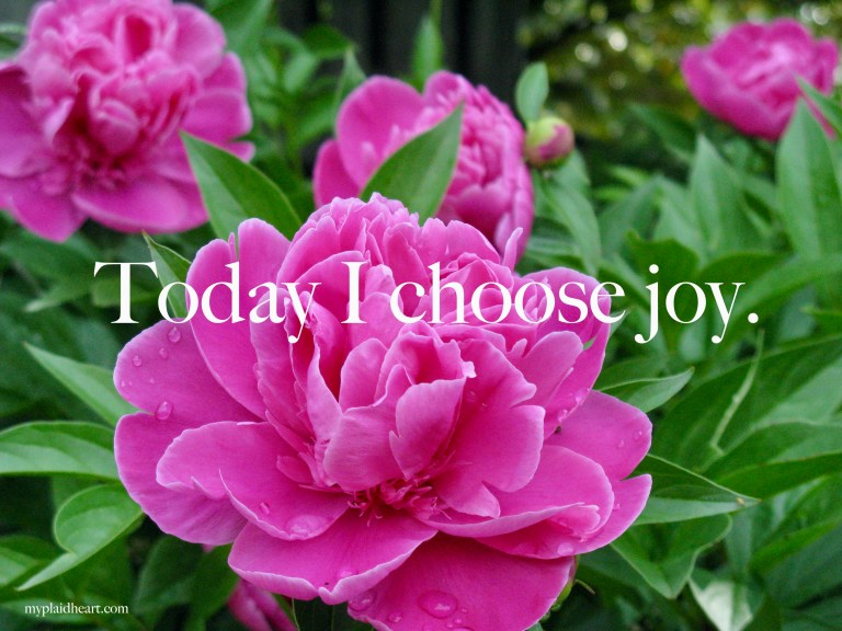 Today I choose joy - words of encouragement.