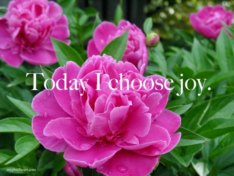 Today I choose joy - words of encouragement.