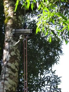 top-camera