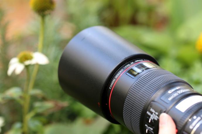 canon macro lens - photography tour
