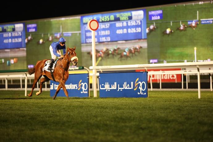 Dubai Horse races