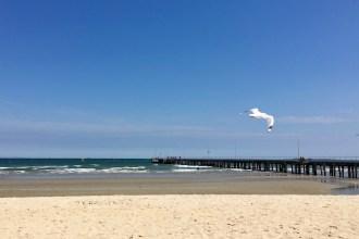 Melbournes best local beaches
