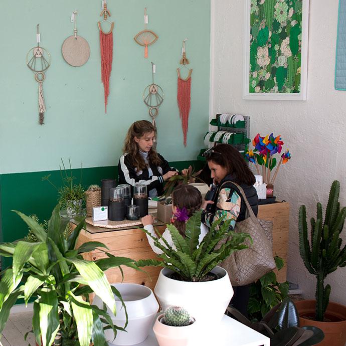 cool cactus plant shop melbourne
