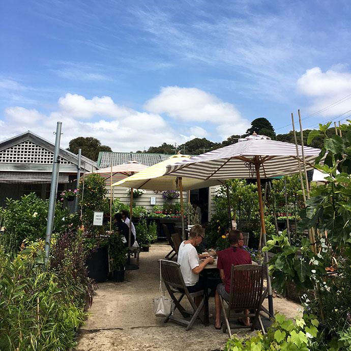 McGain's Nursery, Café and Food Store - cafe review mypoppet.com.au