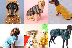 Stylish Dog Coats for your Pampered Pooch