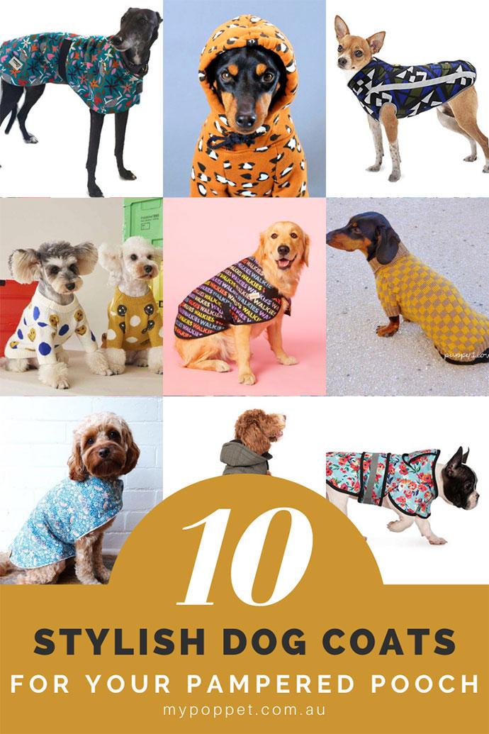 Dog Coats Australia buying guide