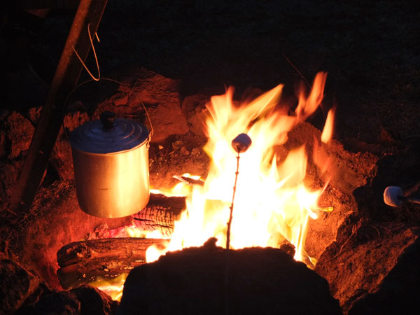 toasting marshmallows over campfire