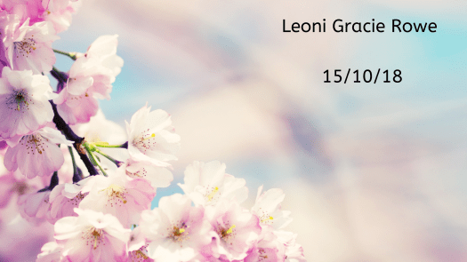Remembering our babies: Leoni Gracie Rowe.